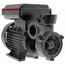 Вихревой насос для систем частного водоснабжения Grundfos PF 2-50 CVBP