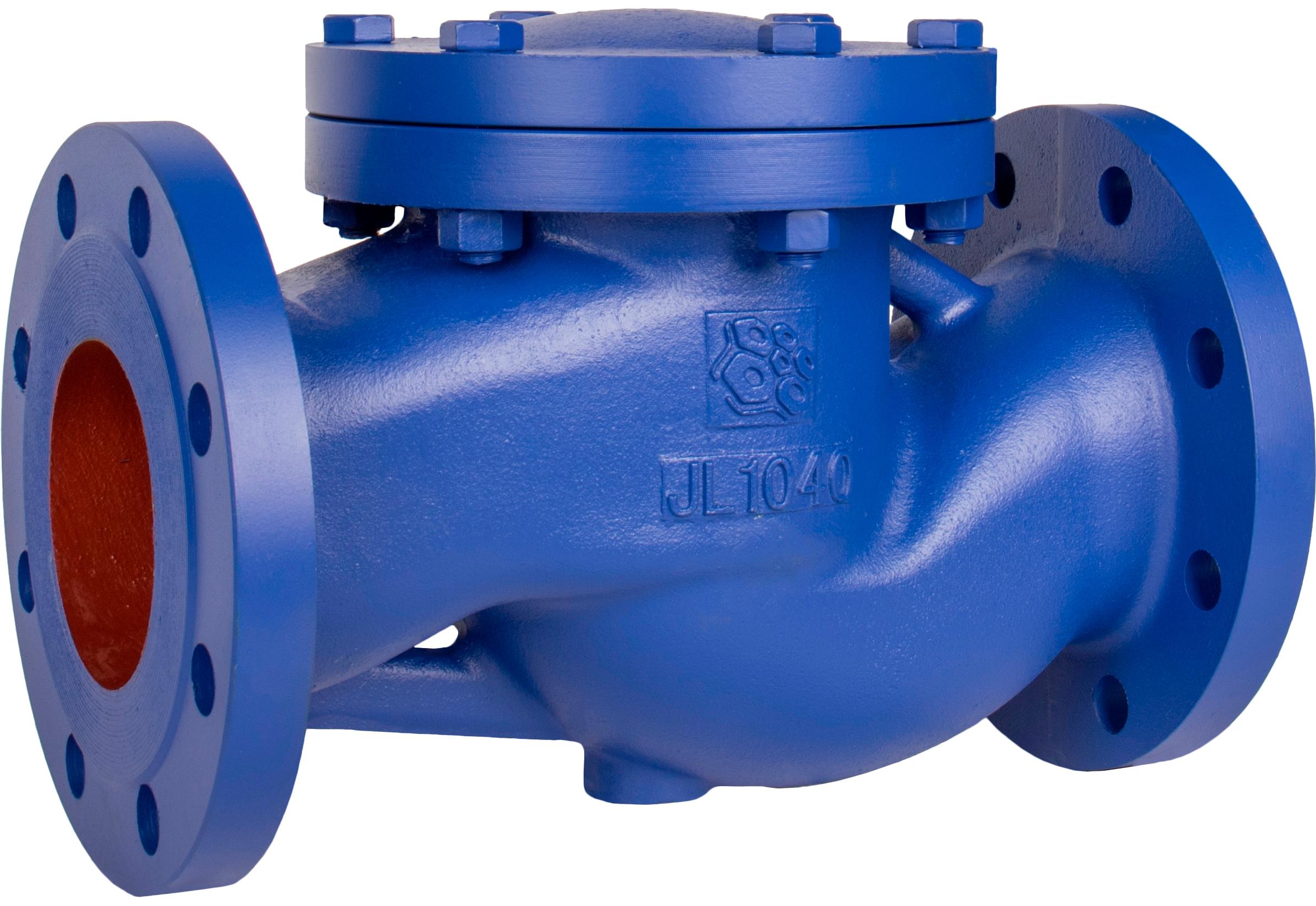 Клапан обратный подъемный чугунный фланцевый Rushwork 487-050-16 DN50 PN16